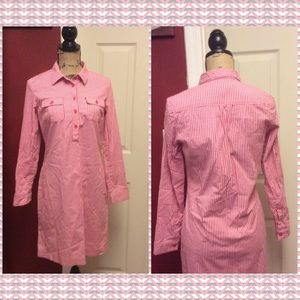 Chadwick's pink & white checkered shirt dress